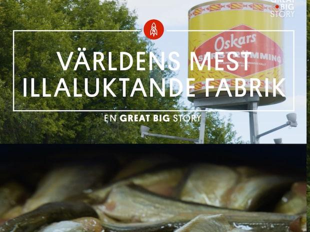 Är det här Sveriges äckligaste arbetsplats?