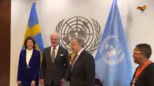 Förvirring vid kungaparets FN-besök