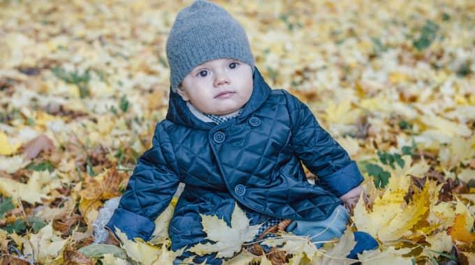 Prins Oscar börjar närma sig ettårsdagen. Foto: KUNGAHUSET