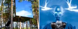 Världens bästa temahotell ligger i Sverige