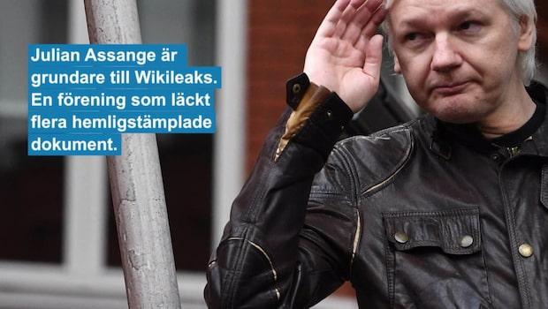 USA planerar att stämma Julian Assange
