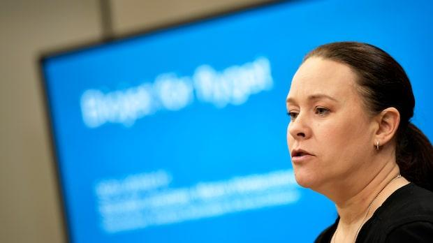 Maria Wetterstrand: 30 procent av flygbränslet ska vara förnybart 2030