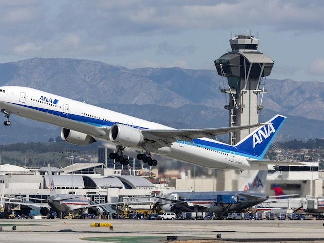 Det var flygbolaget All-Nippon Airways (ANA) som bjöd på den bisarra upplevelsen.