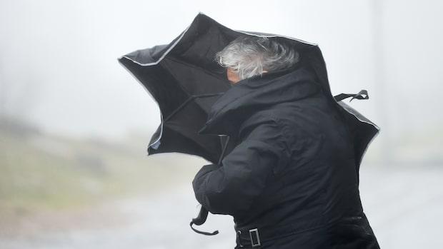 Kyligt och risk för hård vind