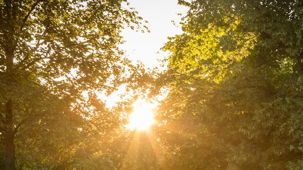 Här finns störst chans till sol i dag