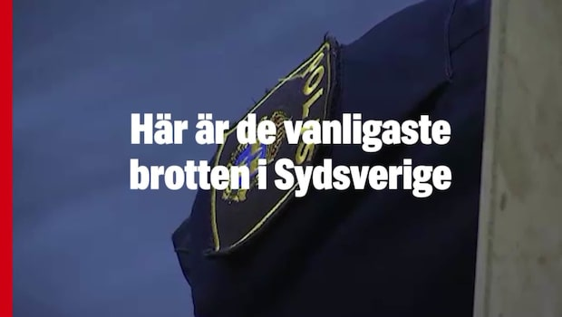 Här är de vanligaste brotten i Sydsverige
