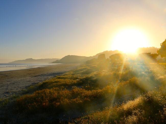 Nya Zeeland är känt från sagornas värld och ett drömresmål för många.