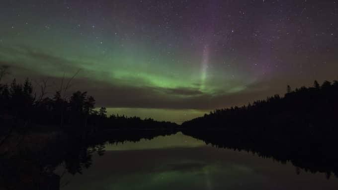 Här är norrskenet utanför Uddevalla. Foto: Ingemar Pettersson Ipnaturfoto.S
