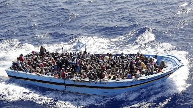 Båtflyktingar omhändertagna av italienska flottan i Medelhavet den 12 september 2014. Foto: GIUSEPPE LAMI / EPA / TT / EPA TT NYHETSBYRÅN