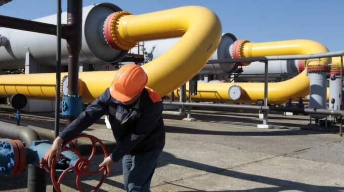 pipeline-dejtingsajter oas dejtingsajt recensioner