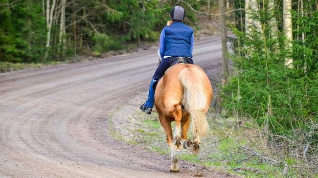 Håll avstånd och visa extra stor hänsyn om det är en ung person på hästryggen.