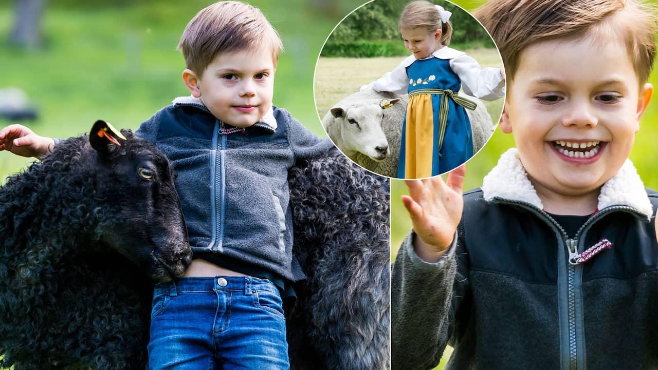 Här gosar lillprinsen med fåren – precis som Estelle