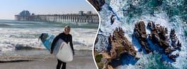 Stränder i alla dess former – fem måsten i Kalifornien