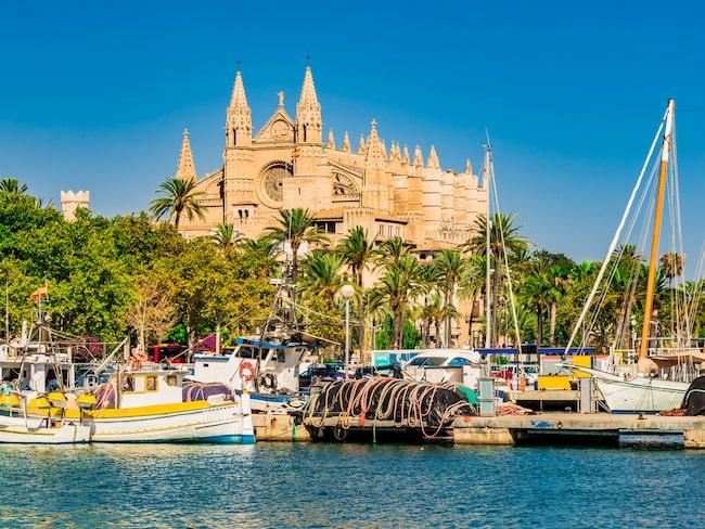 Kommunpolitiker på Mallorca vill begränsa antalet flygningar till ön.