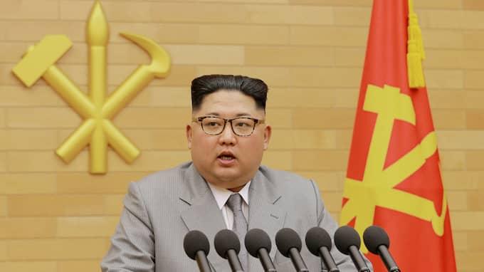 """Kim Jong-Un begärde att parken skulle anläggas och statlig propaganda hävdar att den byggdes """"för att säkerhetsställa att folket åtnjuter alla fördelarna av den socialistiska civilisationen"""" Foto: ????? / AP TT NYHETSBYRÅN"""