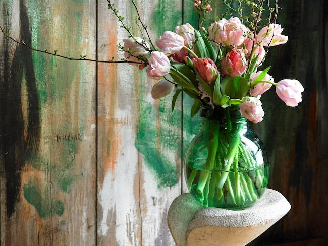 Färgglada tulpanbuketter mot blommiga tapeter eller tulpaner tillsammans med färgade och blommande växter fungerar utmärkt 2018.