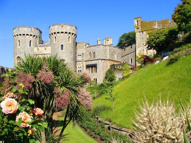 Windsor Castle. På visningarna får man chansen att se några av de rum som kungafamiljen fortfarande använder.