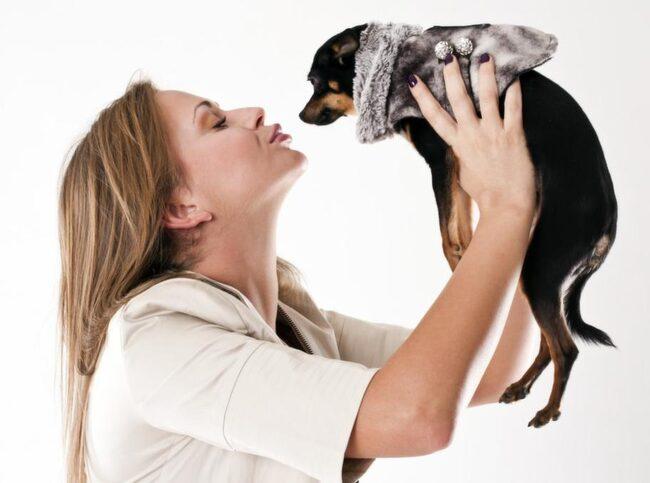 Ofarligt att pussa din hund? Mja...