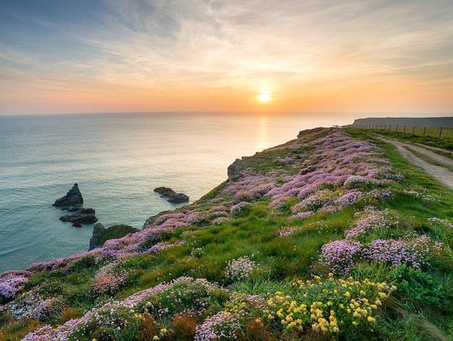 Slottet är beläget i Cornwall, 40 mil väster om huvudstaden London.