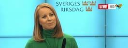 TV: Annie Lööfs tre regeringsalternativ