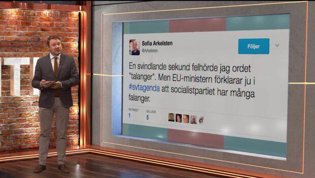 Bara politik: Niklas Svensson listar politikernas bästa tweets