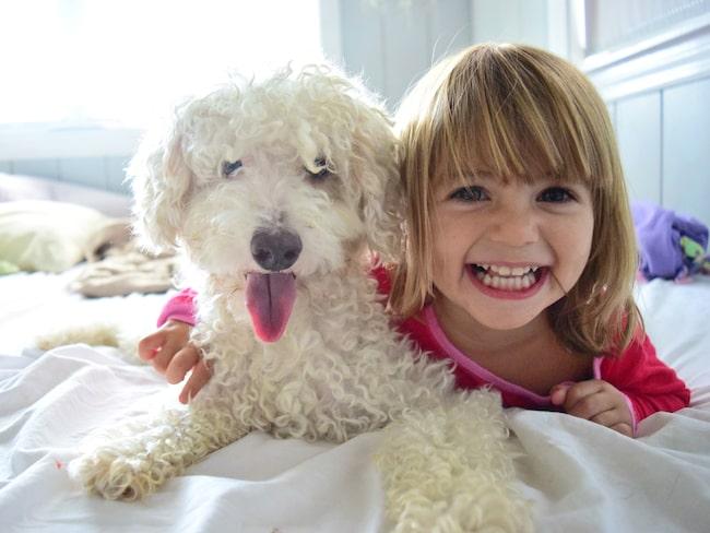 En ny studie visar att hushåll med pälsdjur också har friskare barn, med färre allergier och minskad risk för övervikt.