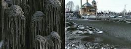 Svarta snöflingor faller över västra Sibirien