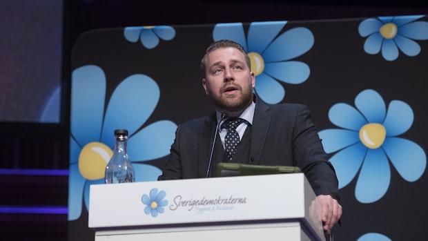 """Mattias Karlsson om Strids uttalande: """"Då måste han lämna partiet"""""""