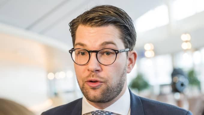 Sverigedemokraternas partiledare Jimmie Åkesson. Foto: Pelle T Nilsson / PHOTO: PELLE T NILSSON/AOP-IBL/I