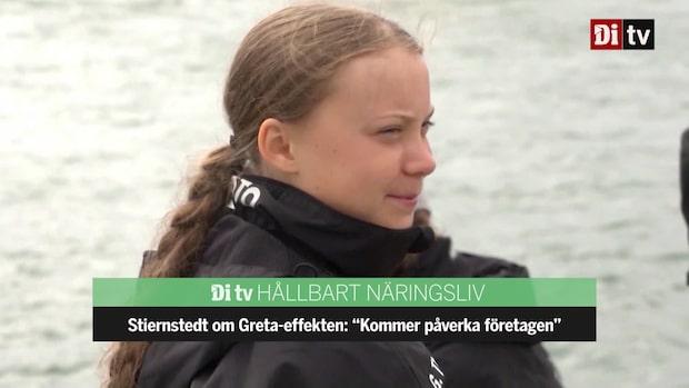 """Stiernstedt om Greta-effekten: """"Kommer påverka företagen"""""""