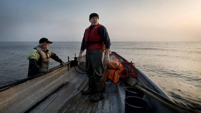 Kvällspostens reportageserie om Östersjön har fått mycket uppmärksamhet. Foto: ÅSA SJÖSTRÖM