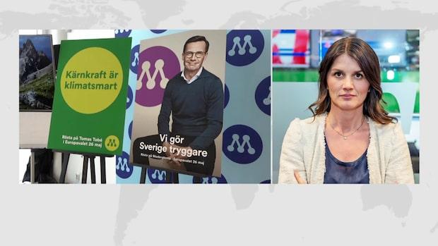 """Statsvetaren om krisen inom M: """"Frustration och irritation"""""""