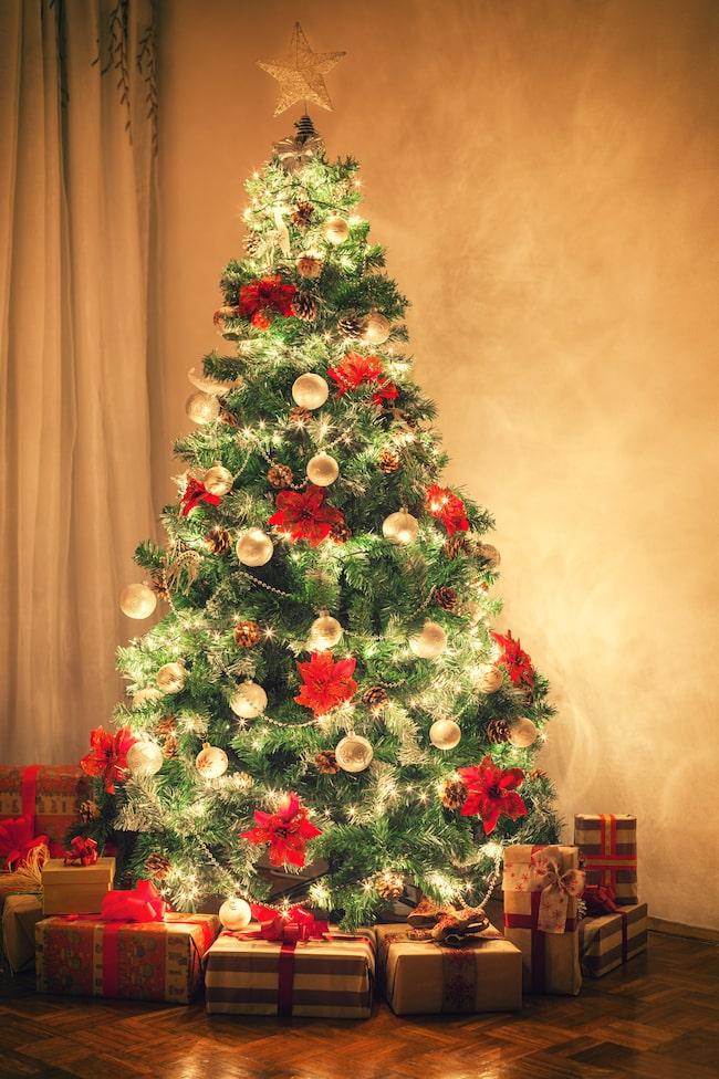 Här nedan kan du läsa om 7 orsaker att skippa julgranen i år.
