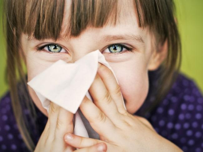 varför ökar allergier