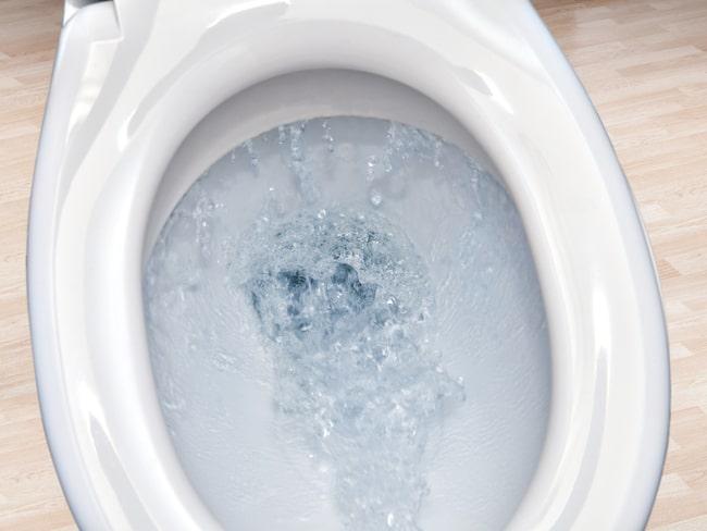 Vad spolar vi svenskar ner i toaletten egentligen?