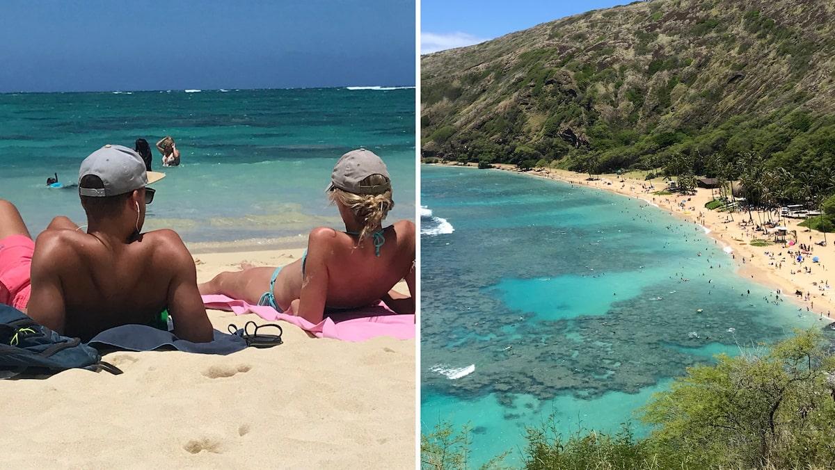 Stor guide: 18 tips till surf- och naturparadiset Hawaii