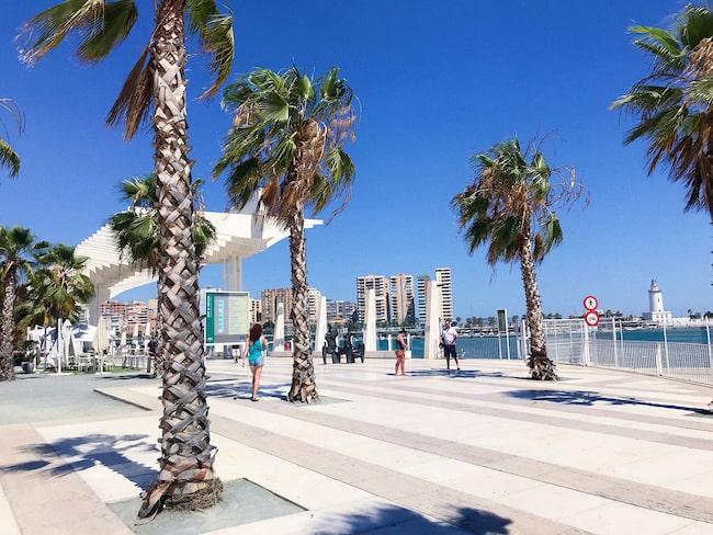 Hamnpromenaden vid Muelle Uno.