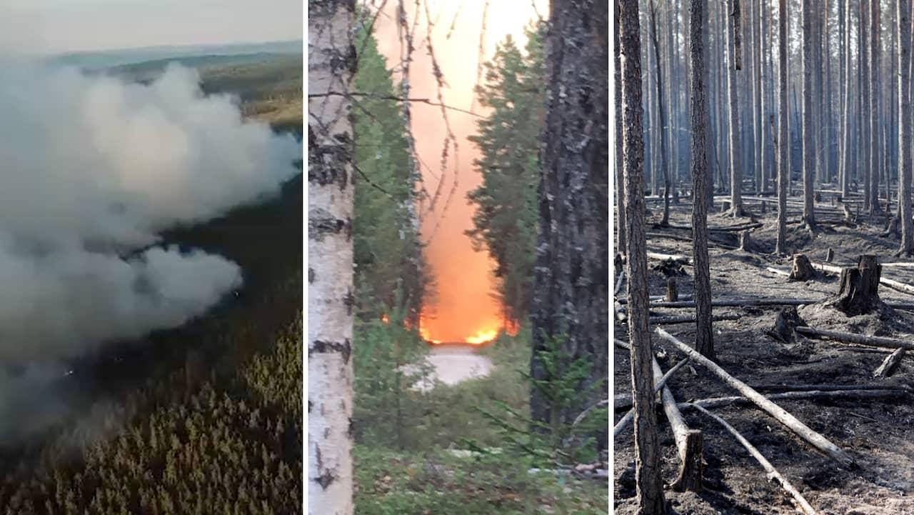 Karta Over Skogsbrander I Sverige.Skogsbranderna I Sverige 2018 Har Brinner Det Just Nu