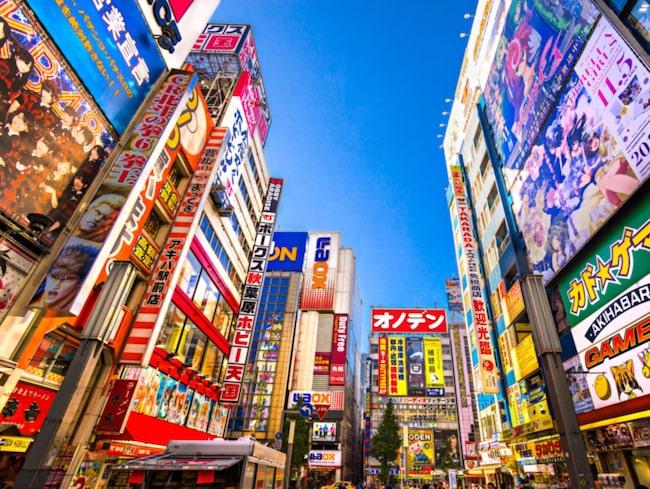 Oavsett vad du söker så finns det i Tokyo – storstadspuls och stillhet, högteknologi och hantverk, festande och total avkoppling.