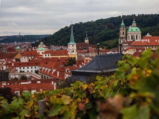 Från Pragborgen har man fin utsikt över staden. Kom gärna hit i arla morgonstund eller på kvällen.