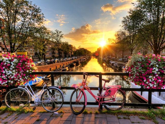 En cykelrur i Amsterdam kan vara väl så romantiskt.