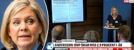 """Andersson: """"Fullt möjligt att få  ner arbetslösheten ytterligare"""""""