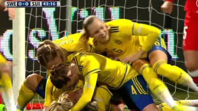 Sverige firar. Foto: Kanal 5