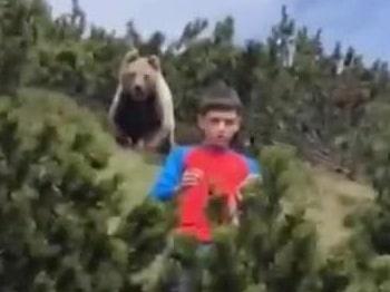 Björnen börjar förfölja 12-åringen – allt fångas på film